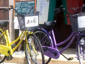 【サイクリング】無料のレンタサイクルで天橋立松並木へレッツGO♪